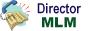 Director MLM Online